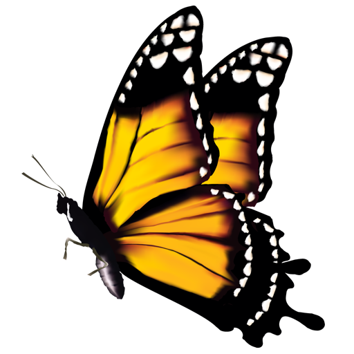 Butterfly Favicon